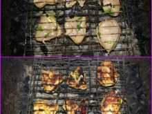 Куриный шашлык с зеленью